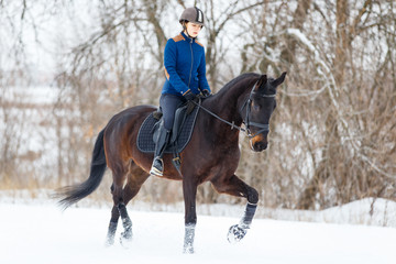 Young rider girl on bay horse walking on snowy field in winter. Winter equestrian activity background with copy space