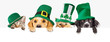 canvas print picture St Patricks Day Dogs and Cats Over Web Banner