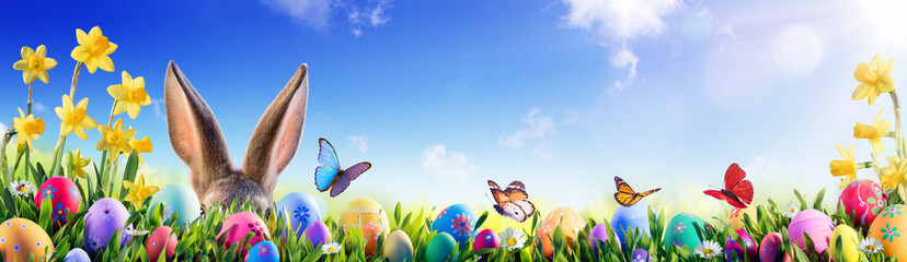 Easter - Bunny And Decorated Eggs In Flowery Field