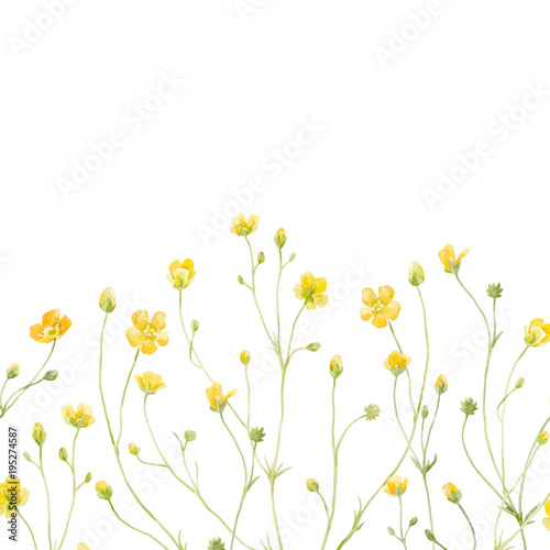 Fototapety, obrazy: Watercolor floral vector composition