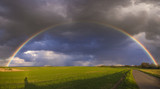 Fototapeta Tęcza - Rainbow over the spring field after the evening storm
