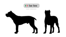 Dog Breed Cane Corso. Italian ...