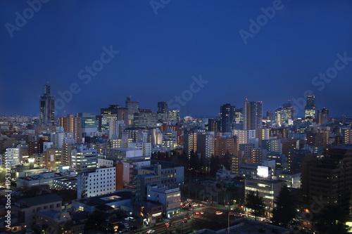Poster Tokyo Sendai City Night View