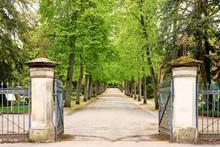 Eingangstor Zum Friedhof In Coburg, Baumallee