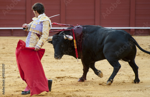 BULLFIGHT IN SEVILLA, SPAIN