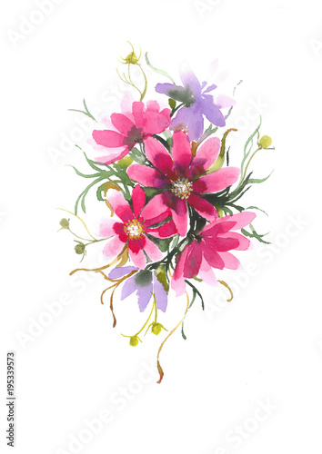 Photo Stands Floral woman Delicate flower Cosmos. Decorative bouquet with flower Cosmos. Watercolor background.