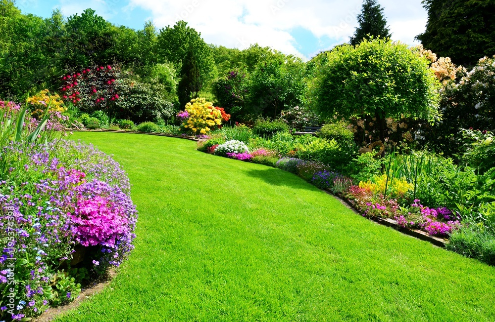 Fototapety, obrazy: beautiful garden with perfect lawn