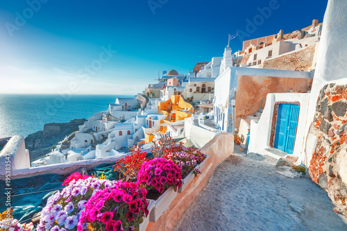 Poster Mediterranean Europe Santorini, Greece. Picturesq view of traditional cycladic Santorini houses on small street with flowers in foreground. Location: Oia village, Santorini, Greece. Vacations background.