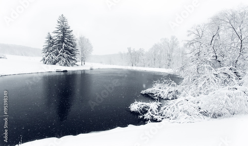 Fotografie, Obraz  Snow-Covered Trees and Shrubs Next to Black Pond During Winter Snow Storm