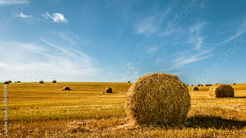 Poster Blauw summer agricultural landscape. A bale of golden straw on the field after harvesting under a beautiful blue sky