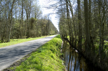 Laesoe / Denmark: Ditch Along ...