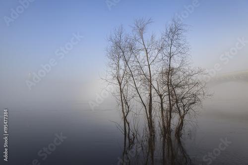 Fototapety, obrazy: Spring flood