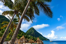 Gros Piton, With Palm Trees An...