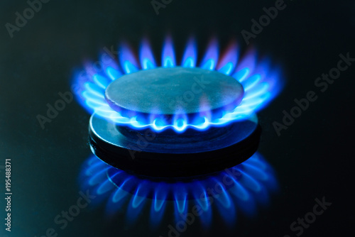 Fotografie, Obraz  The gas is burning, the gas-stove burner, the hob in the kitchen, close-up
