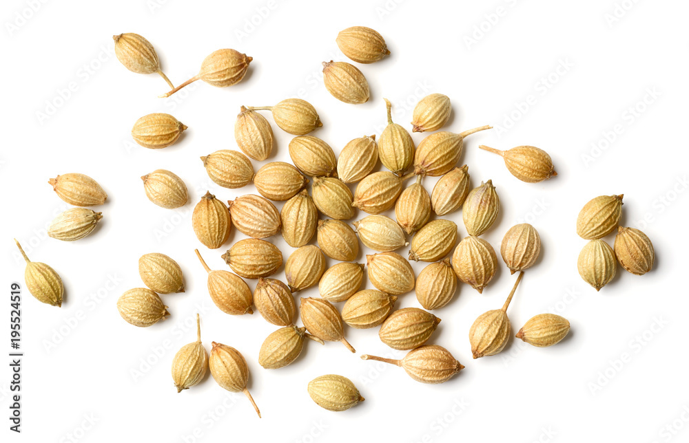 Fototapety, obrazy: closeup of dried coriander seeds isolated on white, top view