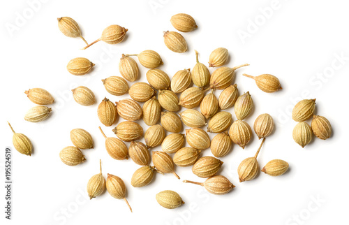 Fototapeta closeup of dried coriander seeds isolated on white, top view obraz