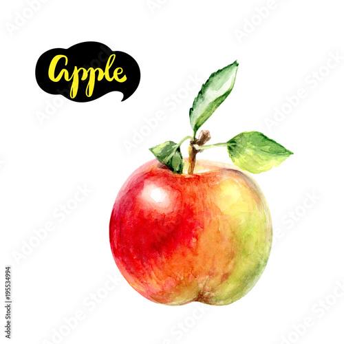 apple fruit watercolor Fototapete