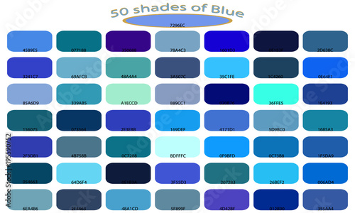 Palette Art Of Blue Color Tones And Shades 50 Isolated On White Background Backgrounds With Codes Vector Ilration