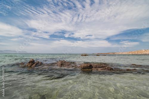 Tecolote Beach La Paz Baja California Sur Mexico
