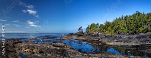 Photo sur Aluminium Cote Küstenlandschaft am Botanical Beach im Juan de Fuca Provincial Park auf Vancouver Island, British Columbia, Kanada.