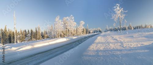 Keuken foto achterwand Bossen Winter road through snowy fields and forests