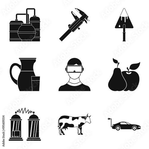 Fotografie, Obraz  Diligence icons set, simple style