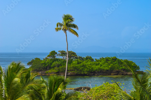 View over palms to a little no named tropical island, one big palm in front of t Canvas Print
