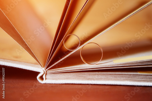 Fotografie, Tablou  Gold wedding rings in a book made by hand from natural materials