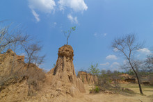 Soil Textures Of Sao Din Na No...