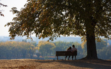 Young Couple Sitting On A Wood...