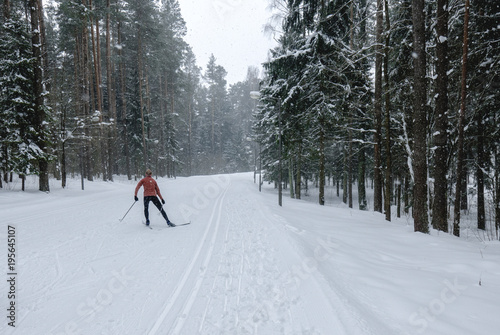 Spoed Foto op Canvas Wintersporten Young adult Caucasian female practising cross-country skiing on a scenic forest trail
