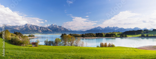 Poster Bergen Lake Forggensee with Ammergau Alps and Tannheim Range in the background in Spring, Bavaria, Germany