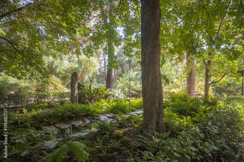 Botanical garden, Real Jardin Botanico, Madrid.Spain.