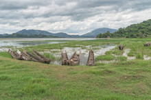 Fishing Boats, Hollowed Out Entirely From The Trunk Of A Tree, On The Shore Of A Lake Near The Settlement Of Mountain Khera Mnngi , Daklak Province, Vietnam