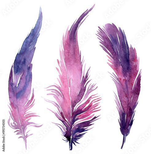 Set of watercolor boho feather illustrations. Fototapete