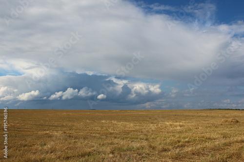 Fotografía  Поле после уборки пшеницы и тучи в небе