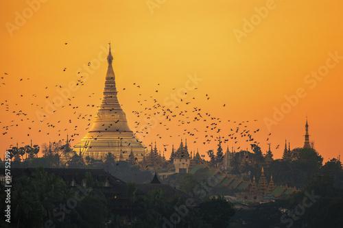 Fotografie, Obraz  Shwedagon pagoda