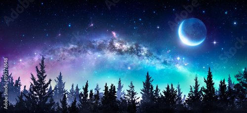 Spoed Foto op Canvas Nacht Milky Way And Moon In Night Forest