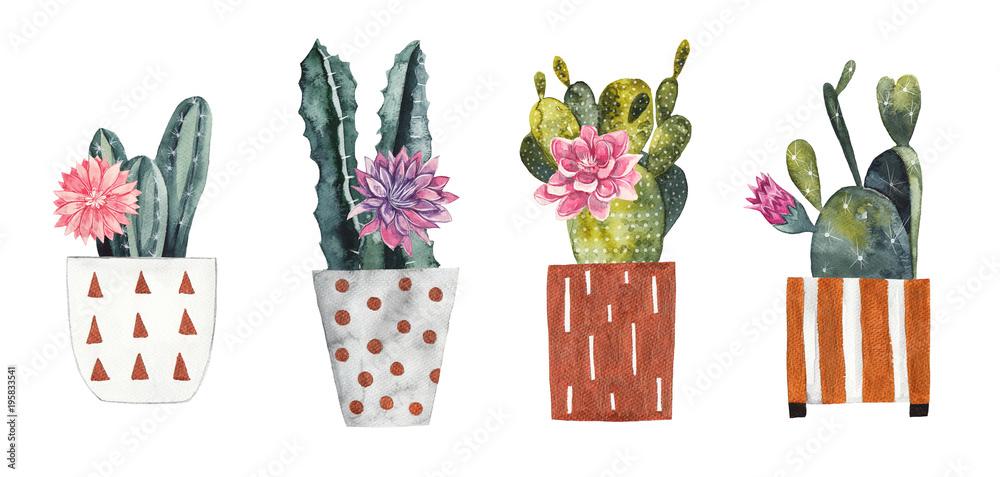 Akwarela kaktusy w dekoracyjne doniczki na białym tle