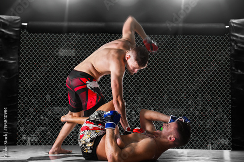 Obrazy MMA   mixed-fighting-on-arena