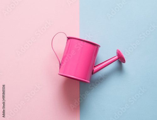 Fotografía  Watering can on pink background