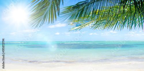 Foto op Plexiglas Caraïben Ferien, Tourismus, Sommer, Sonne, Strand, Meer, Glück, Entspannung, Meditation: Traumurlaub an einem einsamen, karibischen Strand :)