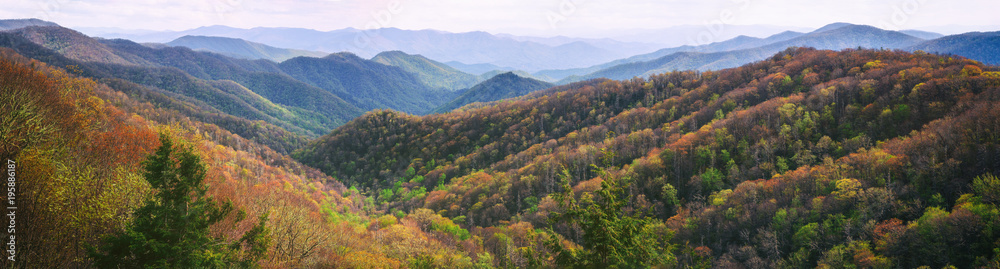 Fototapety, obrazy: Great Smoky Mountains Panorama. Wide Wilderness Background.