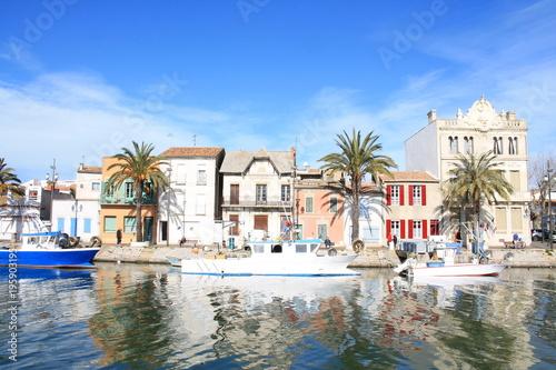 In de dag Cyprus Grau du roi en Camargue, Le Gard, France