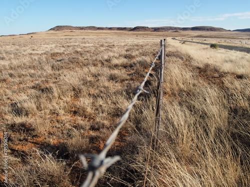 Foto op Plexiglas Zuid Afrika Landschaft in Südafrika