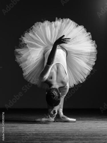 Photo  Young beautiful ballerina is posing in studio