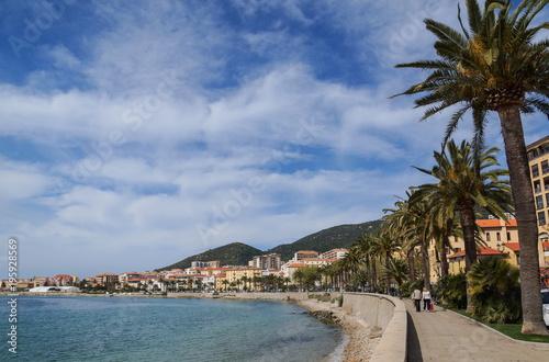 Staande foto Canarische Eilanden korsika