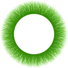 Green Furry Moss Fiber Sprouts Round Frame -  Downy Grass Cadre
