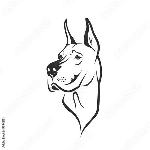 Foto Vector of a dog head (Great Dane or German Mastiff or Danish Hound) on white background