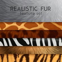 Fur Texture Horizontal Elements